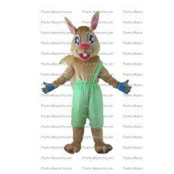 Buy cheap Alice rabbit mascot costume.
