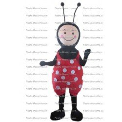 Buy cheap ladybug mascot costume.