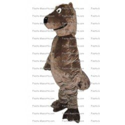 Buy cheap Beaver mascot costume.