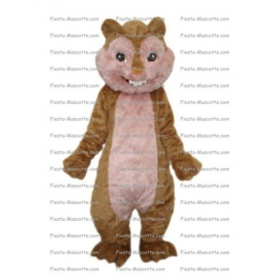 Buy cheap Squirrel Chipmuncks mascot costume.
