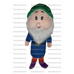 Buy cheap Snow white dwarf mascot costume.