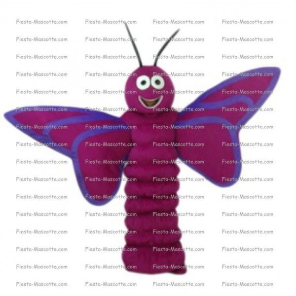 Buy cheap butterfly mascot costume.