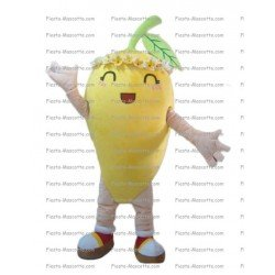 Buy cheap Carrot mascot costume.