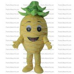 Buy cheap Pineapple mascot costume.