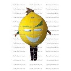 Achat mascotte Citron pas chère. Déguisement mascotte Citron.