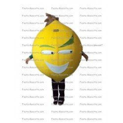Buy cheap Lemon mascot costume.