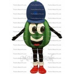 Buy cheap Watermelon mascot costume.