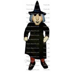 Buy cheap Witch mascot costume.
