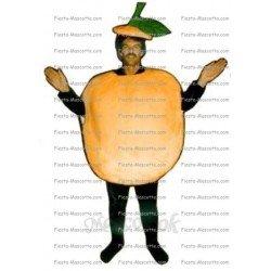 Buy cheap Fried mascot costume.