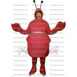 Buy cheap Lobster crab mascot costume.